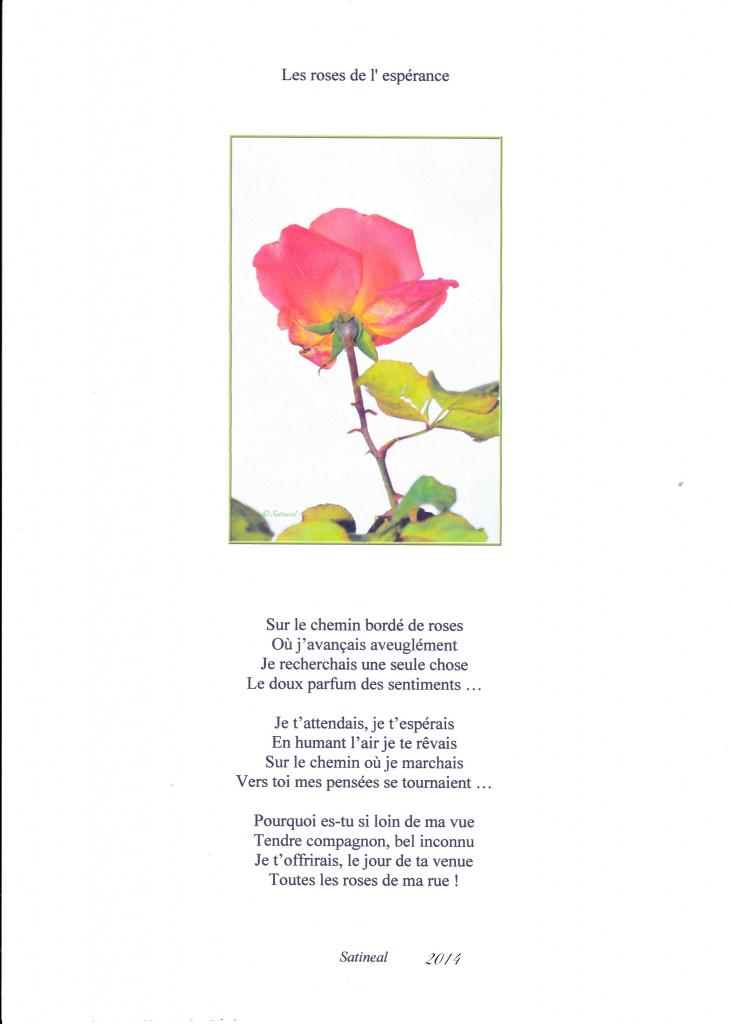 Les roses de l' espérance